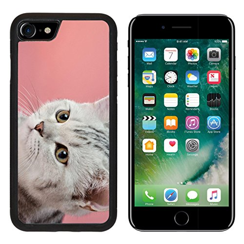 Bella Backplate - MSD Premium Apple iPhone 7 Aluminum Backplate Bumper Snap Case iPhone7 the grey stripy beautiful little kitten on pink background close up muzzle IMAGE 27412280
