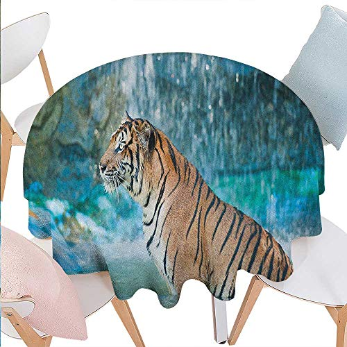 Tiger Dinning Round Tabletop DecorFeline Beast in Pond Searching for Prey Sumatra Indonesia Scenes Round Table Cover for Kitchen D54 Turquoise Pale Brown Black