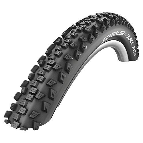 Schwalbe Black Jack Active Line Tire, 20x1.9-Inch ()