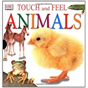 Touch and Feel Animals Box Set