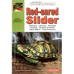 The Guide to Owning a Red-Eared Slider
