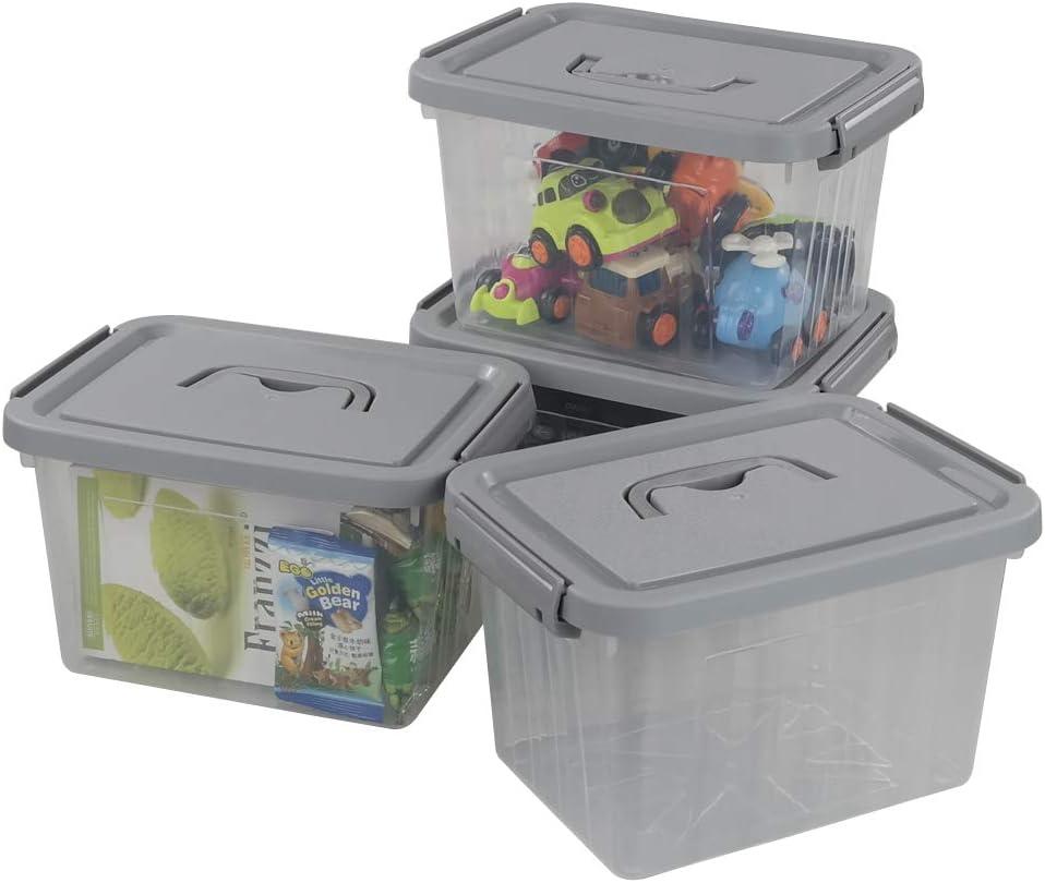 Gitany Caja de Almacenamiento Transparente con Tapa Gris, Juego de 4 Contenedores de Plástico