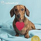 2018 Rachael Hale Dogs Wall Calendar (Day Dream)