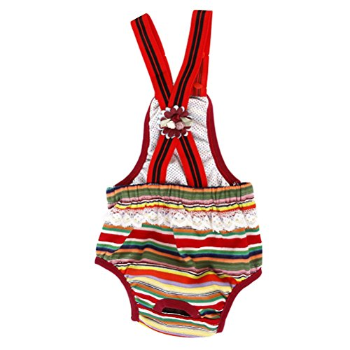 Tinksky Female Suspender Sanitary Colorful
