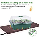 10-Pack Seed Trays Seedling Starter Tray, MIXC