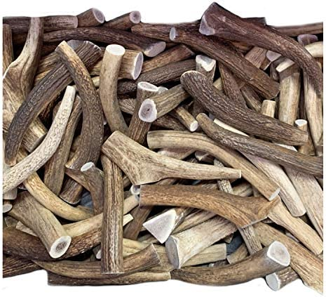 WhiteTail Naturals Premium Whole Elk Antlers for Dogs 1 Pound Pack Natural Dog Chews Naturally Shed Antler Horn 6 to 8 Inch Long Large Antler Bone Chew