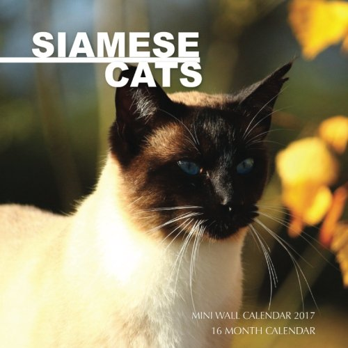 Siamese Cats Mini Wall Calendar 2017: 16 Month Calendar