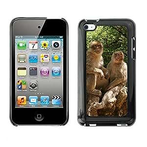 Cas Coq Case Cover // M00146460 Macaco mono Animal Zoo Naturaleza // Apple ipod Touch 4 4G 4th