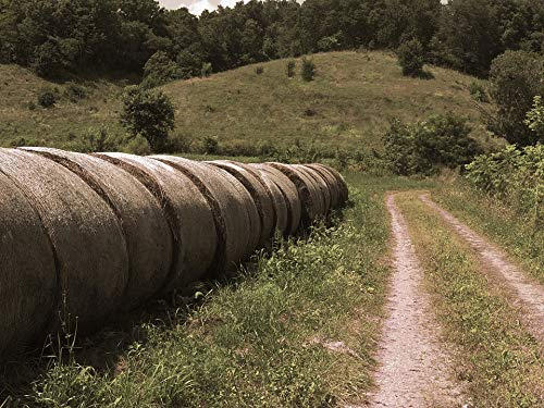 Photography Poster - Hay, Bails, Photography, Farm, 24