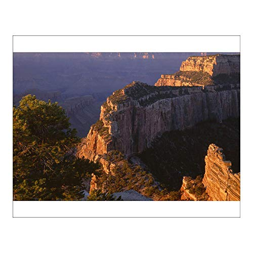 Media Storehouse 10x8 Print of USA, Arizona, Grand Canyon National Park, North Rim, Sunrise Light brightens (12630548)
