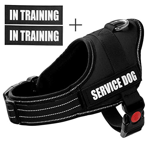 Fairwin Service Vest Dog Harness - Adjustable Nylon with Removable Reflective Patches for Service Dogs Large Medium Small Sizes (XS:Chest 18-21;Neck 11-14, Black)