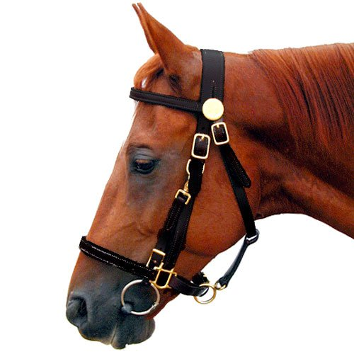 Shenandoah Leather Trail Bridle Combo Halter ()