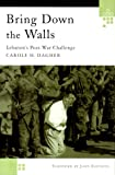 Bring Down the Walls, Carole H. Dagher, 0312229208