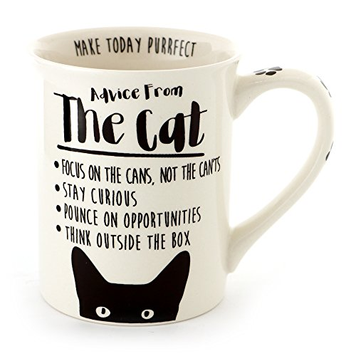 "Enesco 6000546 Our Name Is Mud ""Advice from the Cat"" Stoneware Coffee Mug, 16 oz, - Names Coffee Mugs"