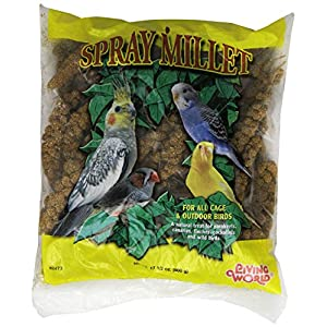 "Living World Spray Millet,17.6"". 43"