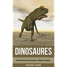 Dinosaures: Informations Amusantes & Belles Images  (French Edition)