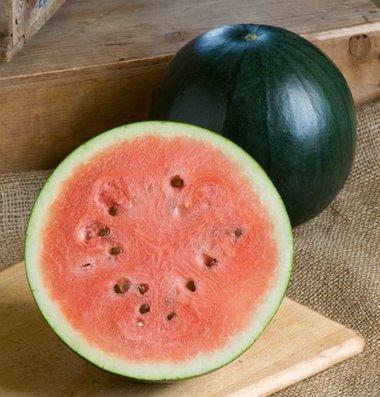 David's Garden Seeds Fruit Watermelon Sugar Baby D476A (Red) 25 Heirloom Seeds