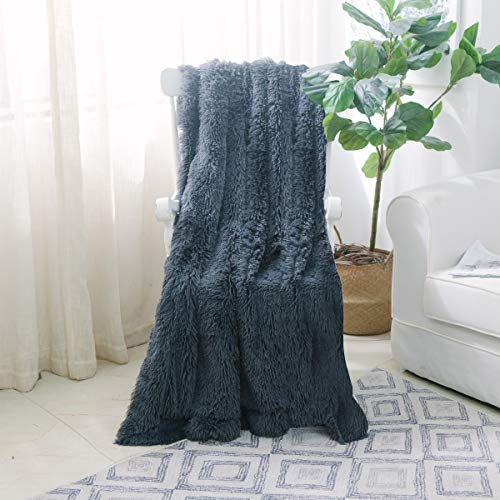 NordECO HOME Super Soft Shaggy Long Fur Throw Blanket, Faux Fur Lightweight Warm Elegant Cozy Plush Fleece Microfiber Blanket for Couch/Bed/Chair - 50