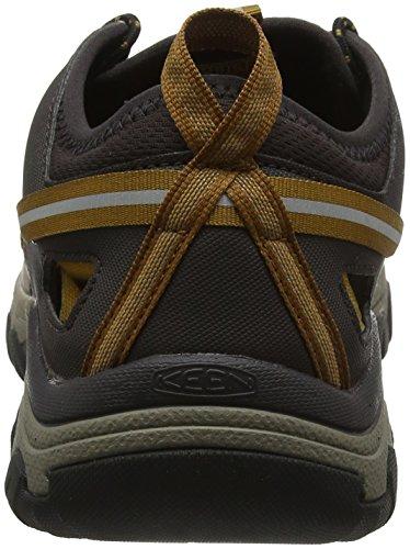 Golden III Brown Homme Randonnée Brown Cuban Keen Basses de Arroyo Cuban Chaussures Marron Golden 7ZqSp