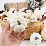 DomeStar Artificial Pumpkins, 11PCS White Fake