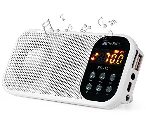 Hi-Rice SD-102 Portable FM Radio USB/Micro SD Card MP3 Player LCD Display LED Digital Media Speaker by Hi-Rice