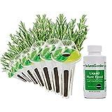 AeroGarden 800623-0208 Seed Pod Kit, 7, Green