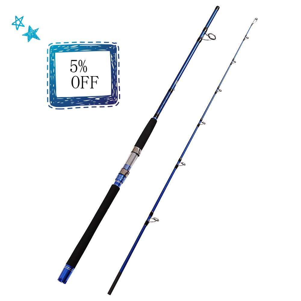 Fiblink 2 Piece Saltwater Spinning Fishing Rod Offshore