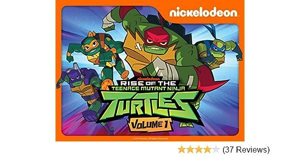 rise of the teenage mutant ninja turtles newsworthy online