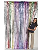 Fun Express Metallic Rainbow Foil Fringe Curtains (1 Piece)