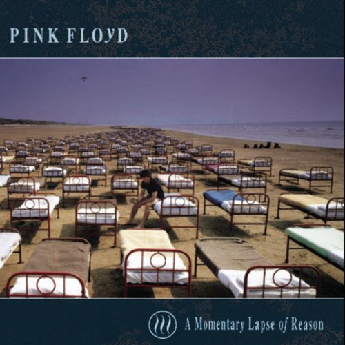 Image result for pink floyd momentary