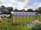 Riverstone Industries Monticello MONT-16-BK-MOJAVE 8 x 16 Ft. Greenhouse Black - Mojave