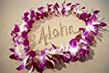 Hawaii, Close-Up Detail Of Purple Orchid Lei On Beach Aloha Written In Sand C1445 Poster Print (19 x 12)