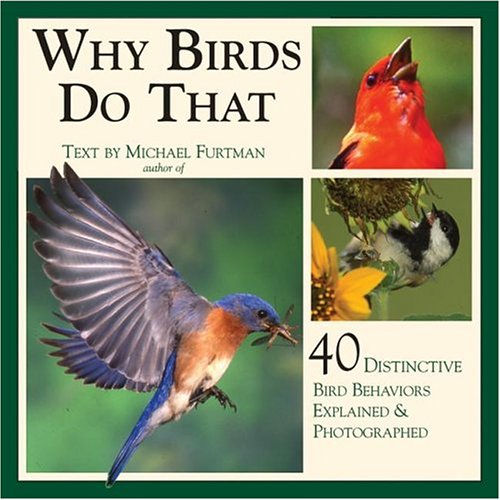 Download Why Birds Do That: 40 Distinctive Bird Behaviors Explained & Photographed ebook