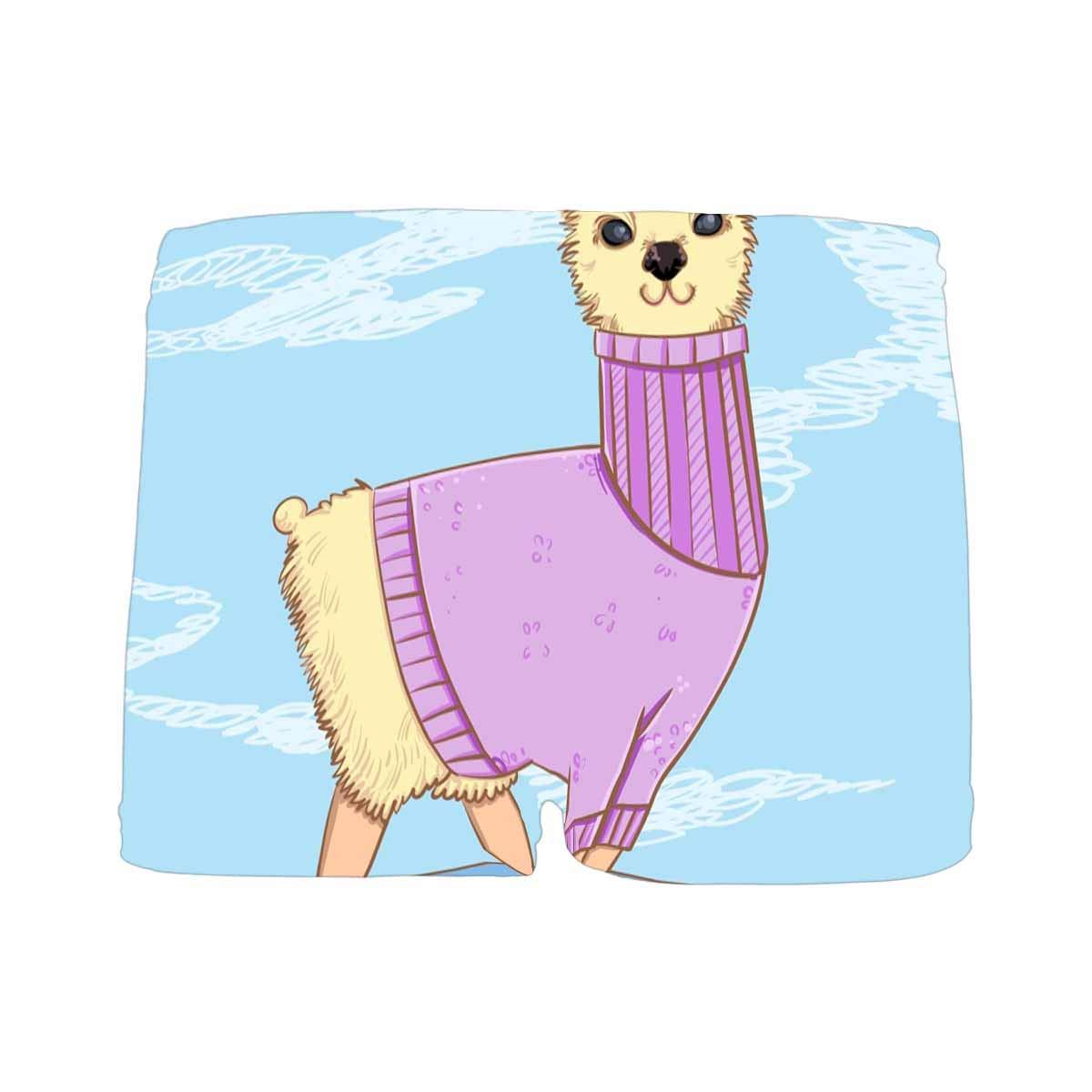 INTERESTPRINT Boys Alpaca All Over Print Boxer Briefs 5T-2XL