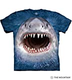 T Shirts With Sharks Review and Comparison