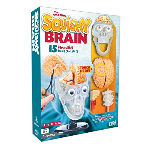 SmartLab Toys The Amazing Squishy Brain -