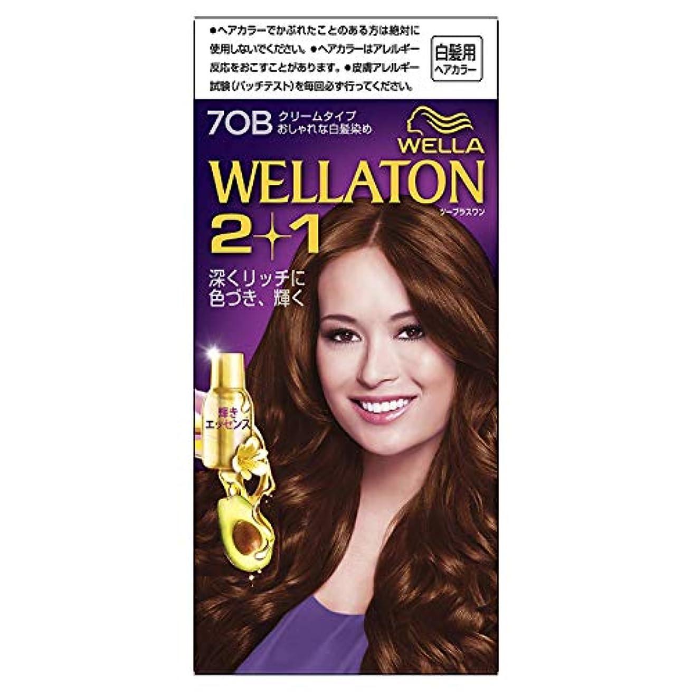 舞い上がる反対した測定可能ウエラトーン2+1 白髪染め クリームタイプ 7OB [医薬部外品] ×6個
