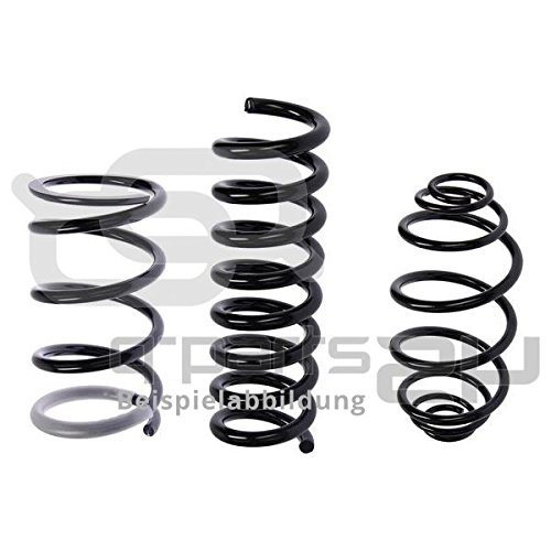 BILSTEIN 37-262822 Low Fitting Springs