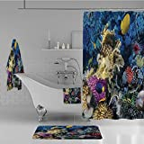 Calypso Fish Shower Curtain Bathroom 4 Piece Set Shower Curtain Floor mat Bath Towel 3D Print,Fishes Colony in Red Sea Egypt Africa Underwater,Fashion Personality Customization adds Color to Your Bathroom.