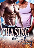 Chasing the Stag: M/M Gay Romance