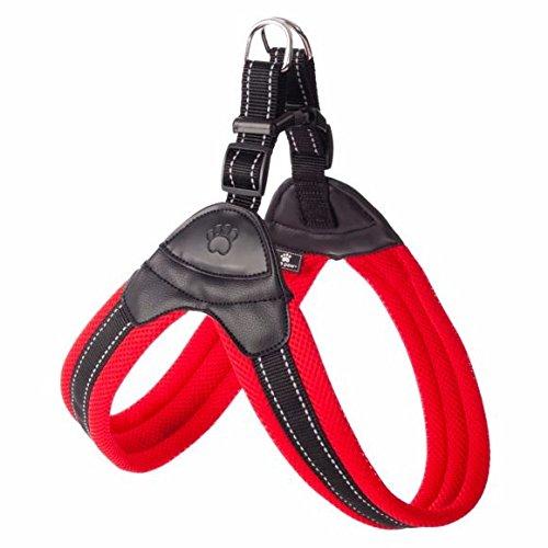 top dog harness - 6