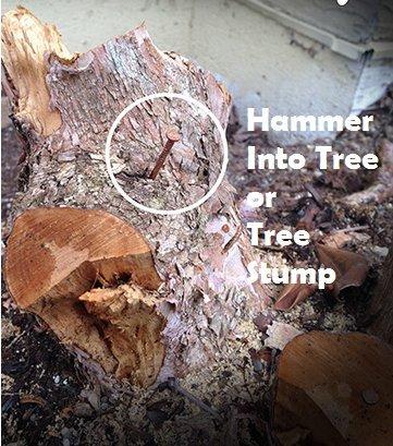 Buy hammer drill vs regular