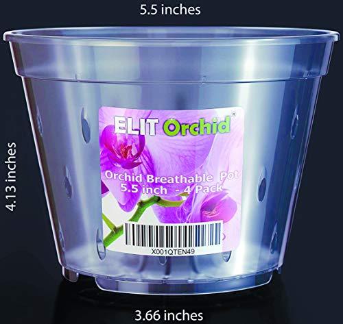 Orchid Pots with Holes Cymbidium Phalaenopsis Orchid Pot Indoor Clear Plastic Vanda Plant Pots Set 4 Pack (5.5 - Orchid 4