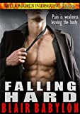 Free eBook - Falling Hard
