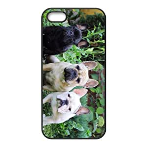 linJUN FENGFrench Bulldog Hight Quality Plastic Case for Iphone 5s