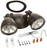All-Pro MX1 200W Twin Head Light type: Halogen Floodlight, Bronze