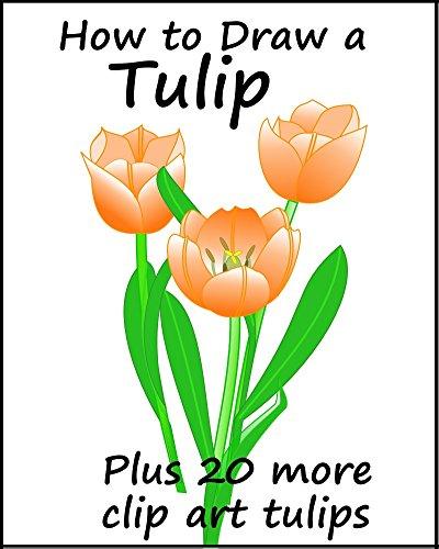 How to Draw a Tulip (How To Draw A Tulip)