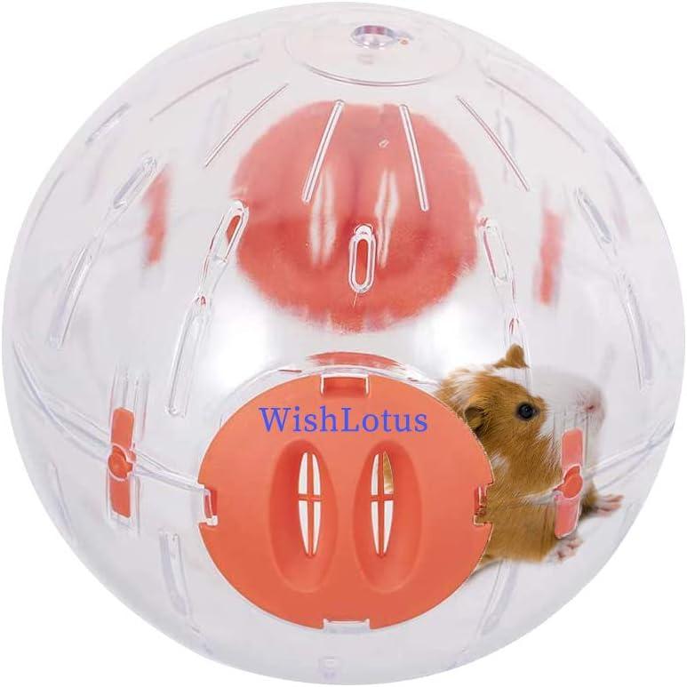 WishLotus - Bola de hámster, rueda de hámster para correr, pequeña mascota, plástico, bonita bola de ejercicio de seda dorada Shih Tzu oso para correr, juguete para aumentar la actividad