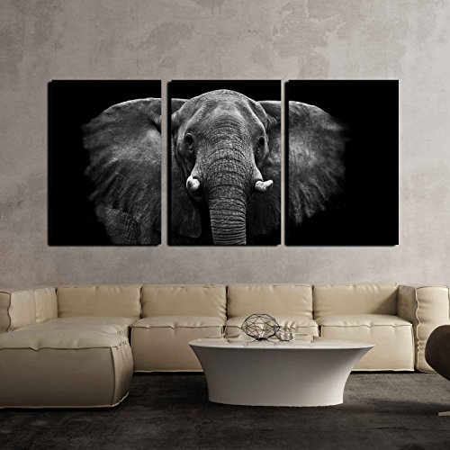 wall26 - 3 Piece Canvas Wall Art - Elephant - Modern Home Decor Stretched and Framed Ready to Hang - 16