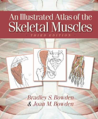 An Illustrated Atlas of the Skeletal Muscles, 3rd Edition